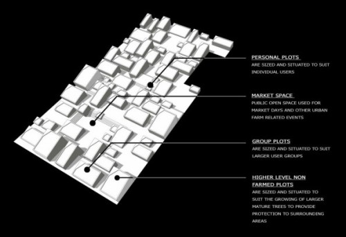 Huntington-Urban-Farm_Tim-Stephens_plusMOOD_Typologies-595x407